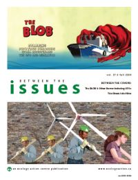 Between the Issues, Fall 2009
