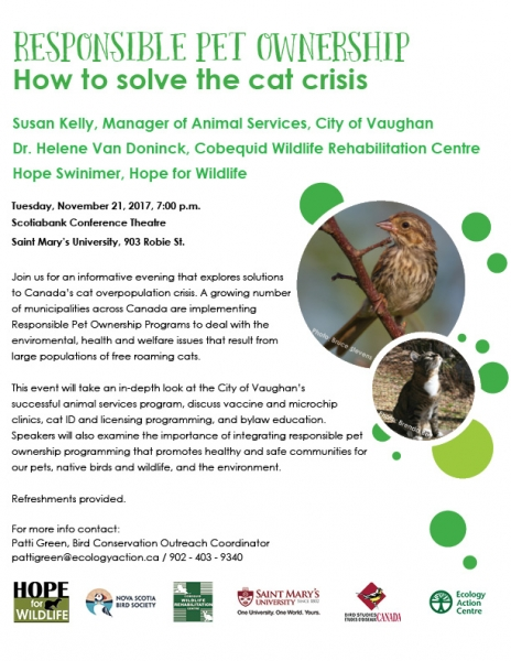 213e9864567318 Responsible Pet Ownership  How to solve the cat crisis
