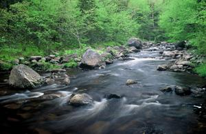 The new Humes River Wilderness Area in Cape Breton (the last intact river system