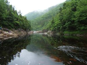 Ecology Action Centre Applauds Government investment in Protected Areas
